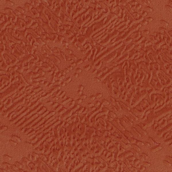 Mars coral