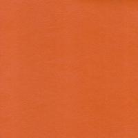 Morgan orange