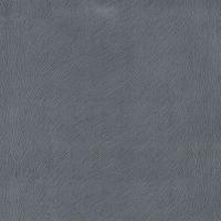 Hawaii grey