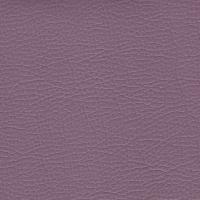 Maestro lilac