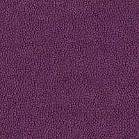 Atlant violet