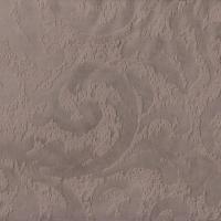 Magma camel