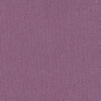 Impulse lilac