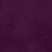 Grazie violet
